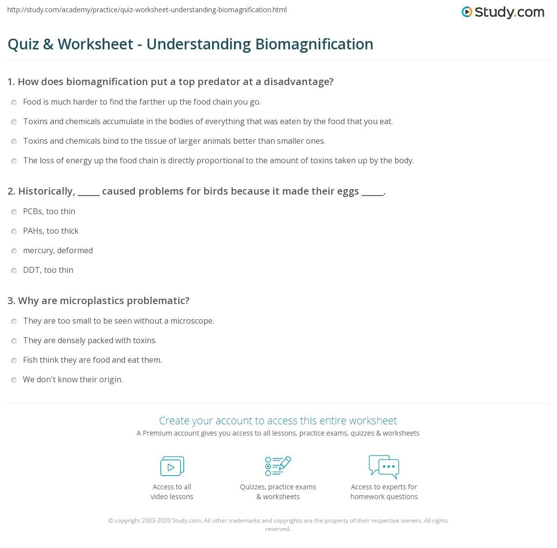 Quiz & Worksheet - Understanding Biomagnification   Study.com