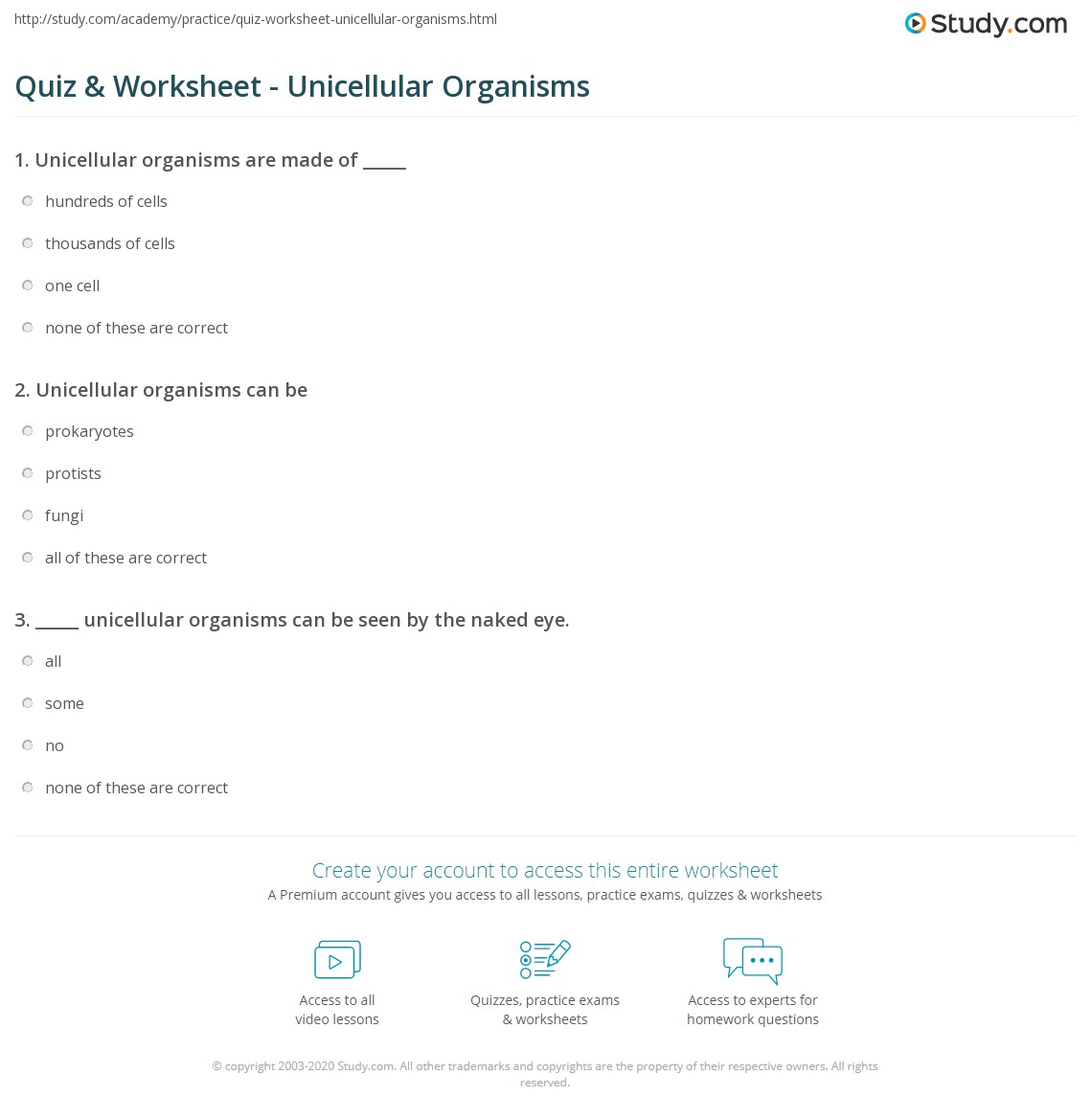 Quiz & Worksheet - Unicellular Organisms | Study.com