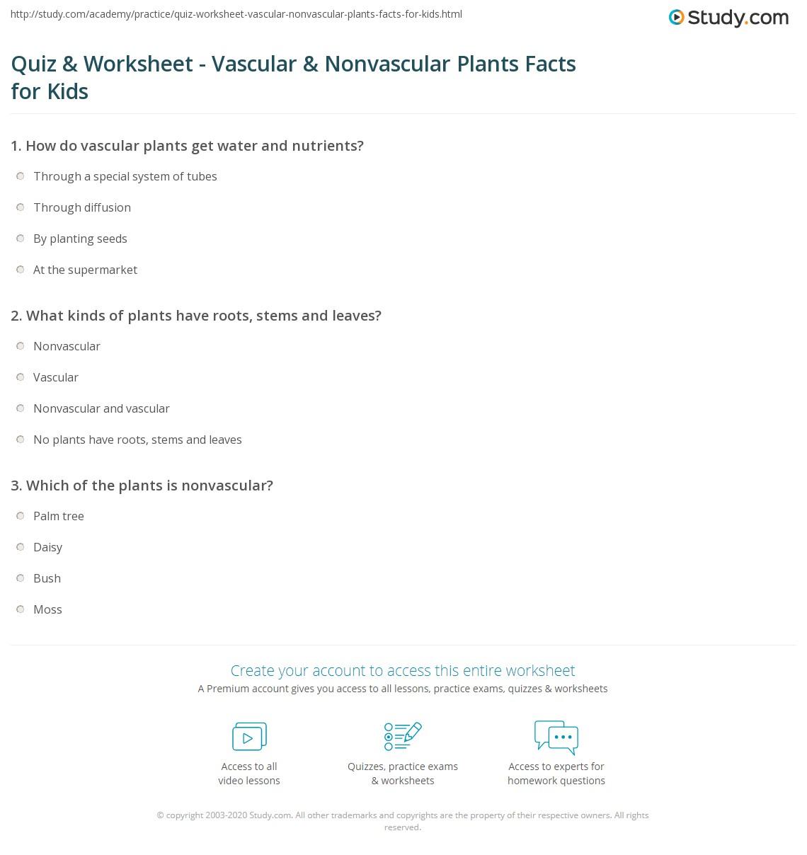 Uncategorized Vascular And Nonvascular Plants Worksheet quiz worksheet vascular nonvascular plants facts for kids print lesson worksheet