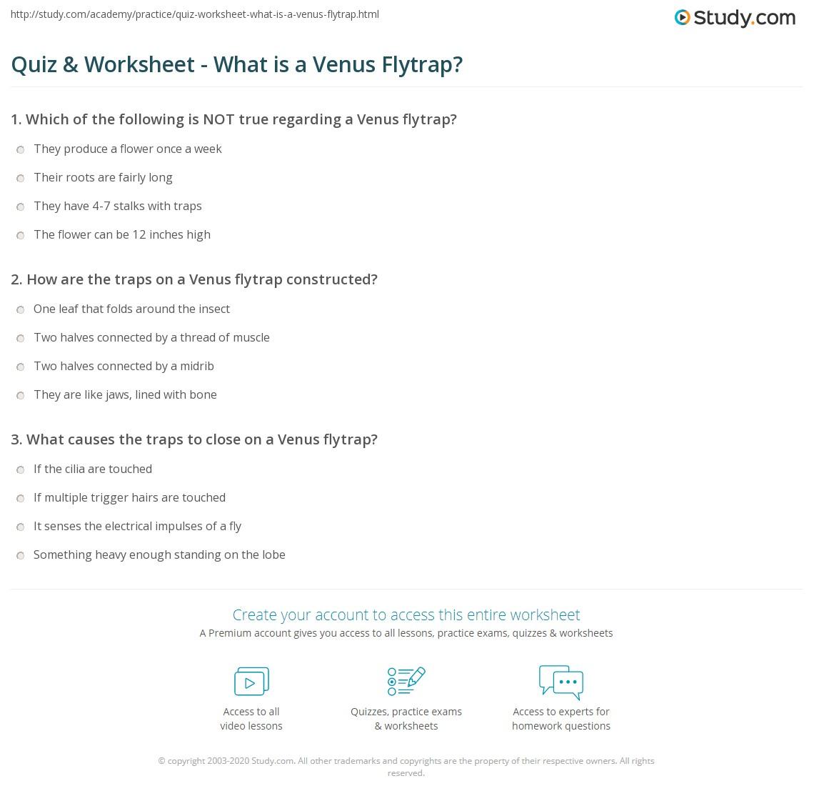 Quiz & Worksheet - What is a Venus Flytrap? | Study.com