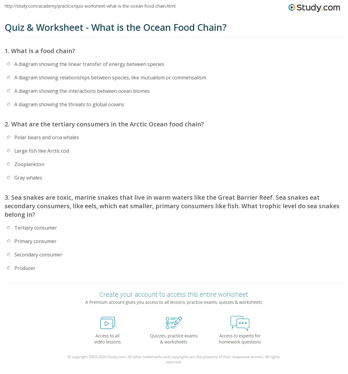 worksheet Food Chains Worksheet quiz worksheet what is the ocean food chain study com print worksheet
