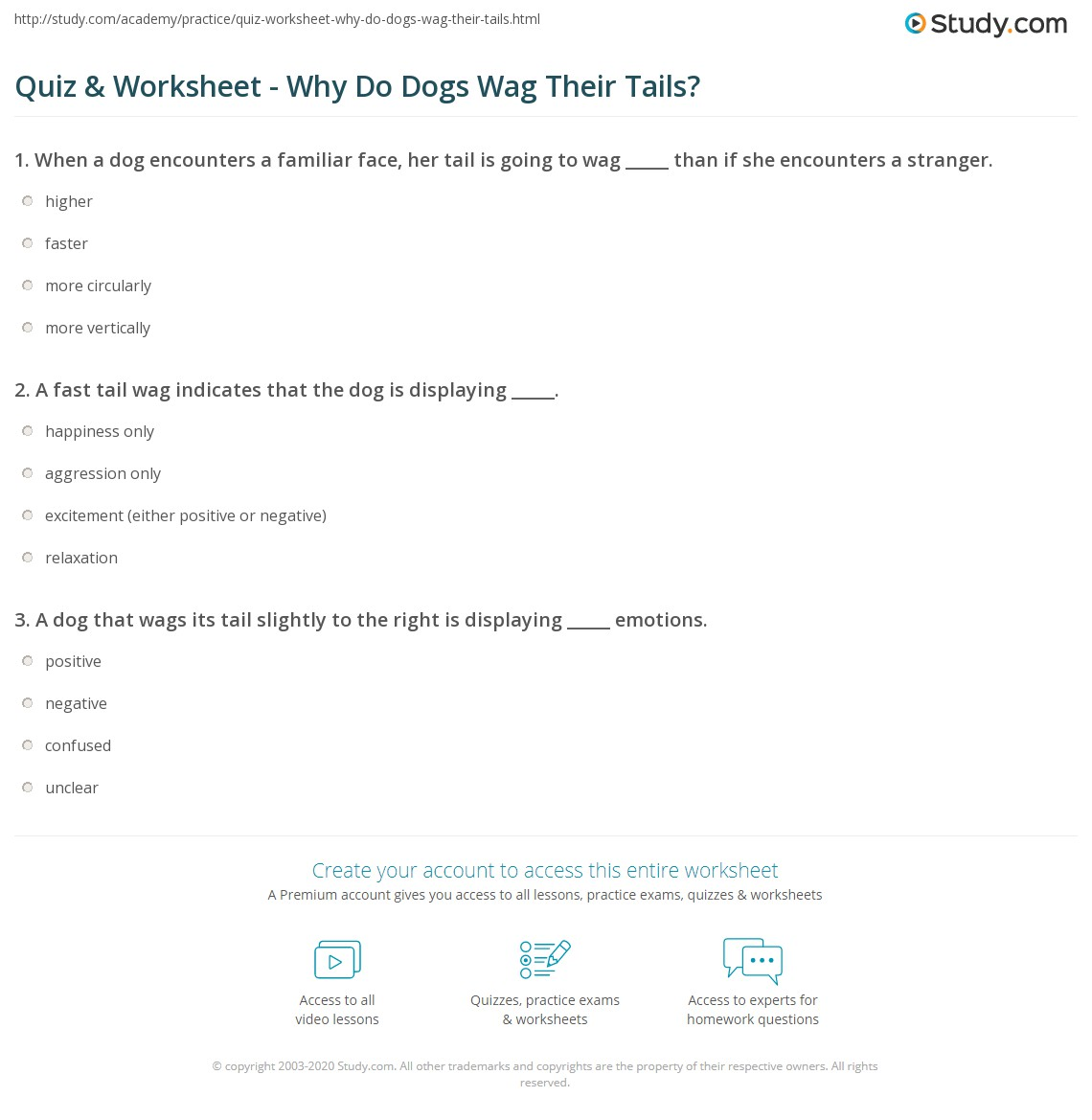 Quiz & Worksheet - Why Do Dogs Wag Their Tails?   Study com
