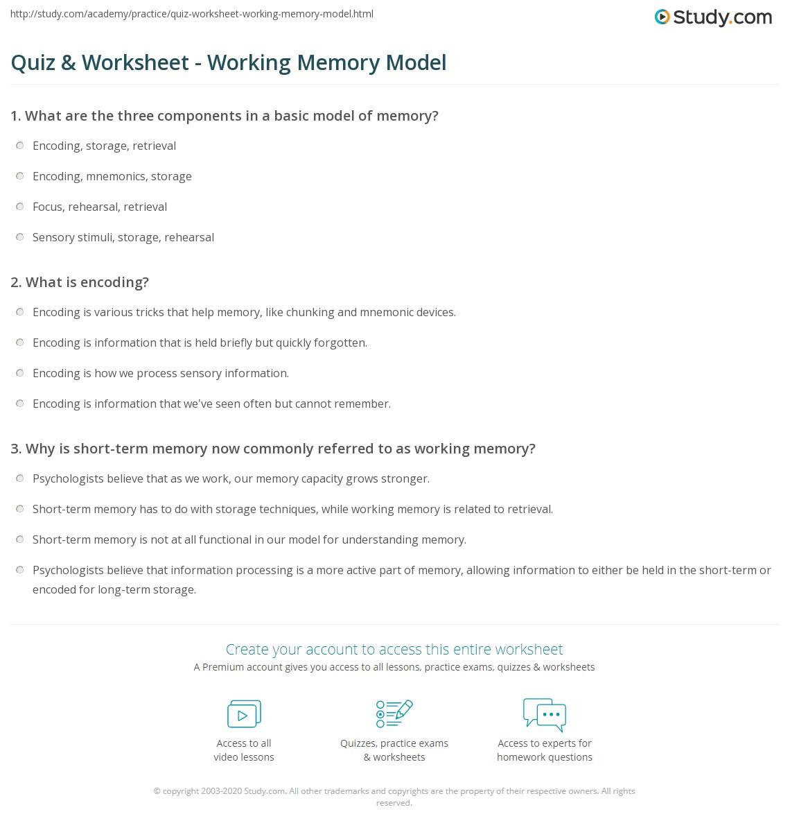 Quiz Worksheet Working Memory Model – Memory Worksheets
