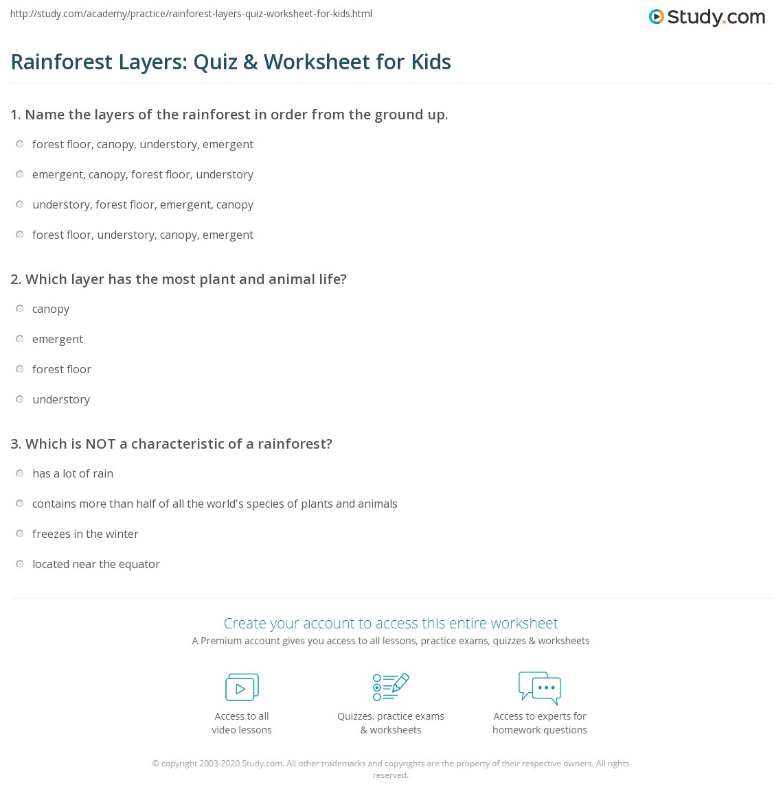 Worksheets Layers Of The Rainforest Worksheet rainforest layers quiz worksheet for kids study com print lesson worksheet