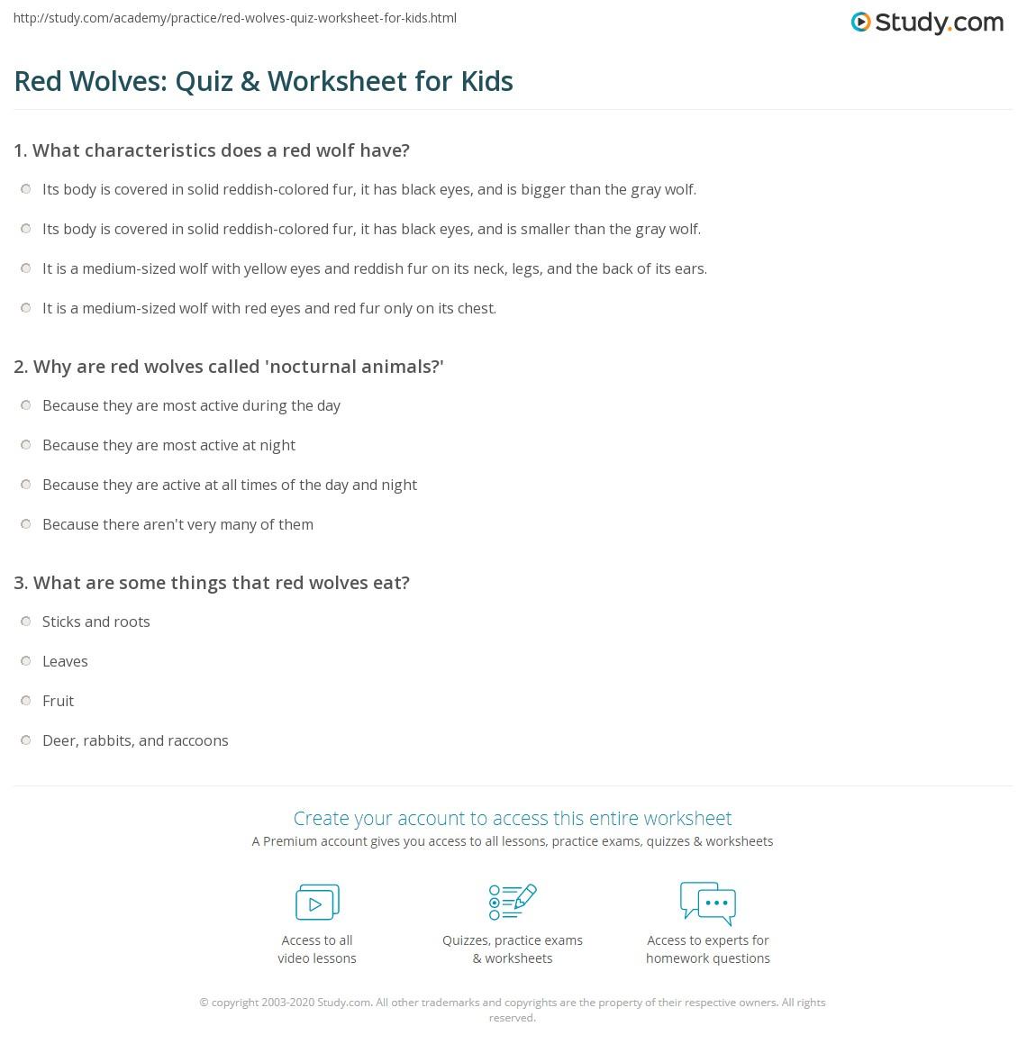 red wolves quiz u0026 worksheet for kids study com