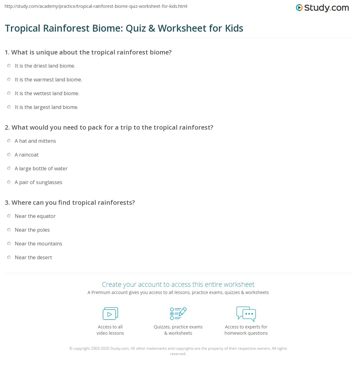 worksheet Tropical Rainforest Worksheet tropical rainforest biome quiz worksheet for kids study com print facts lesson worksheet