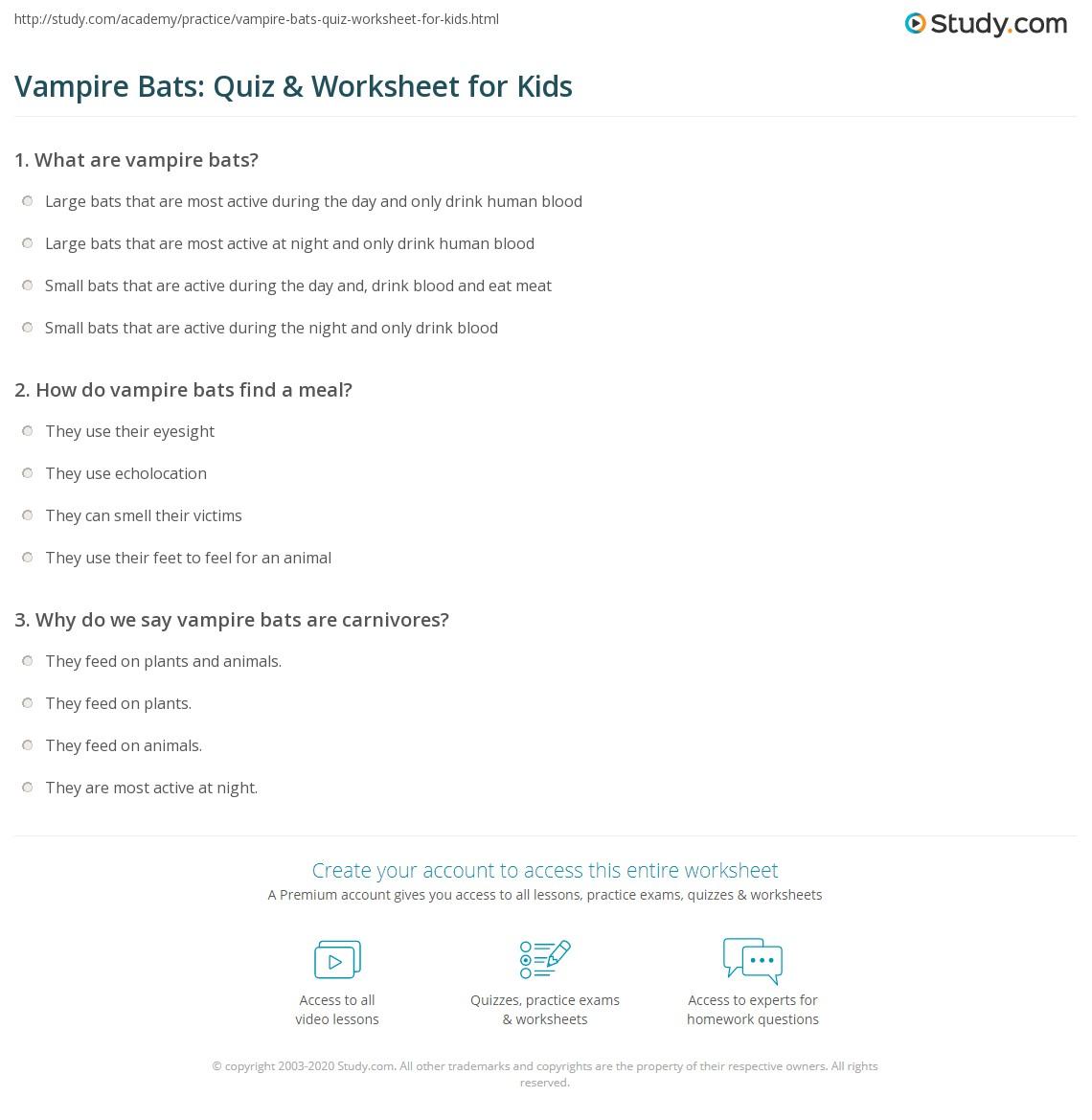 vampire bats quiz u0026 worksheet for kids study com