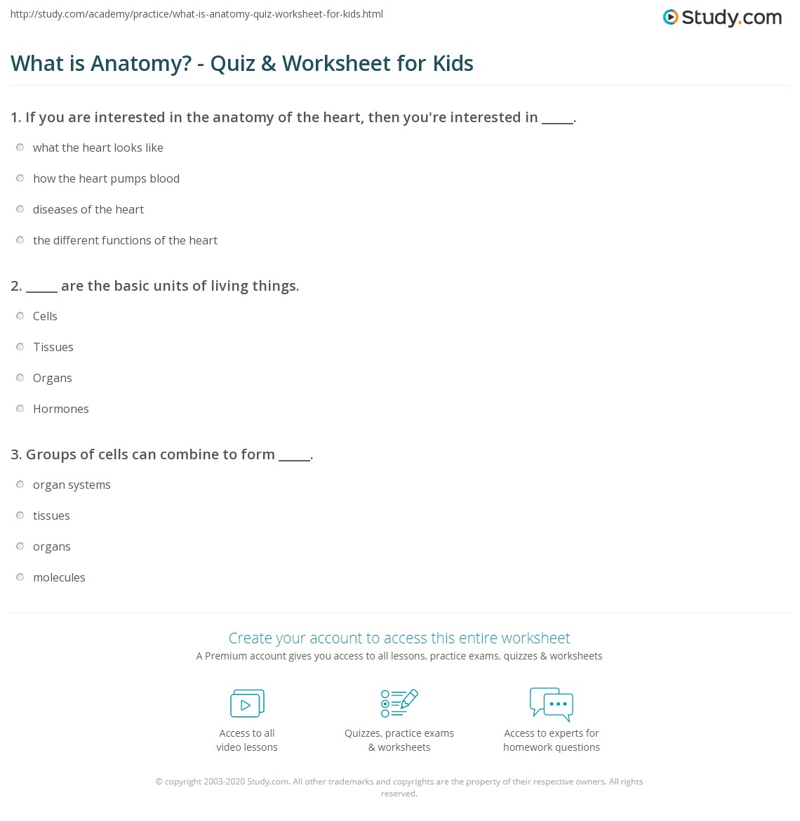 What is Anatomy? - Quiz & Worksheet for Kids | Study.com