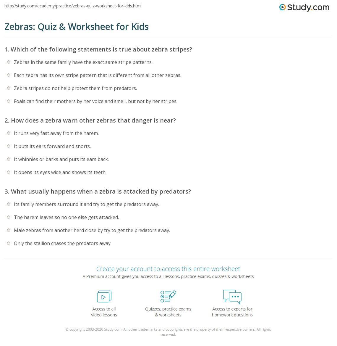 worksheet Zebra Worksheets zebras quiz worksheet for kids study com print zebra facts lesson worksheet