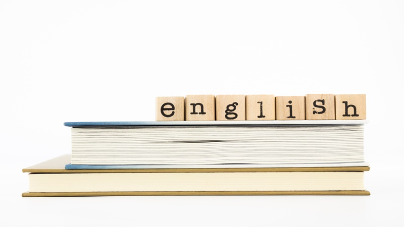 10th Grade English: Help and Review Course - Online Video Lessons