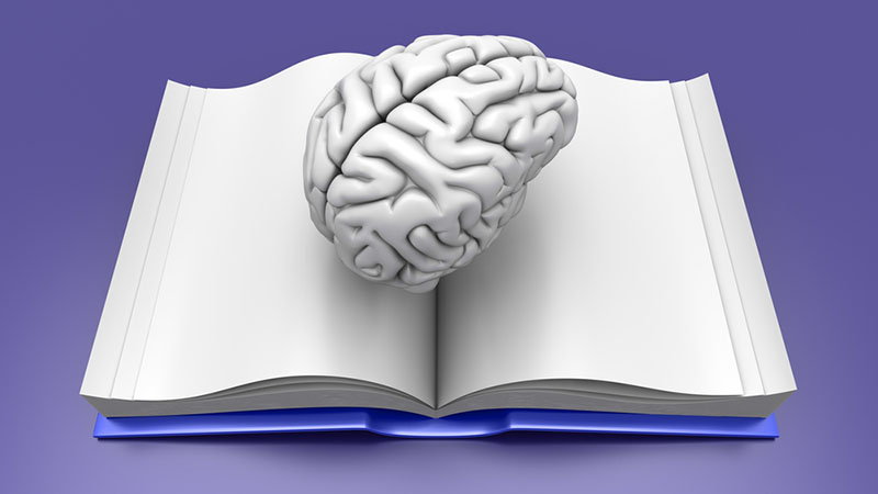Psychology Essay Format