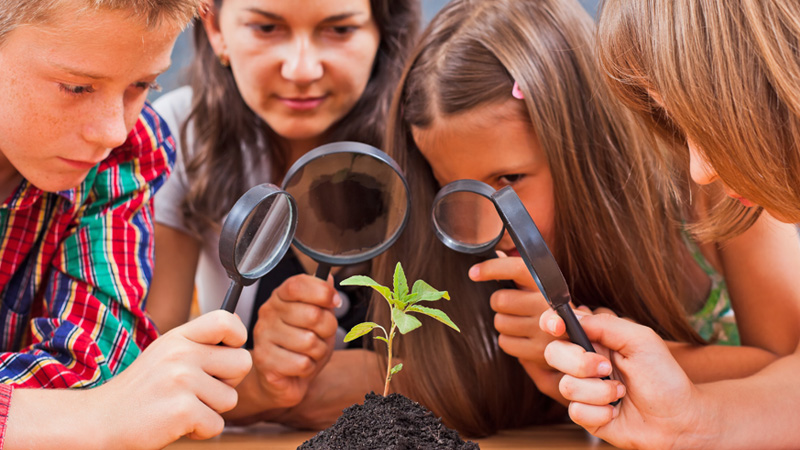 biology for kids course