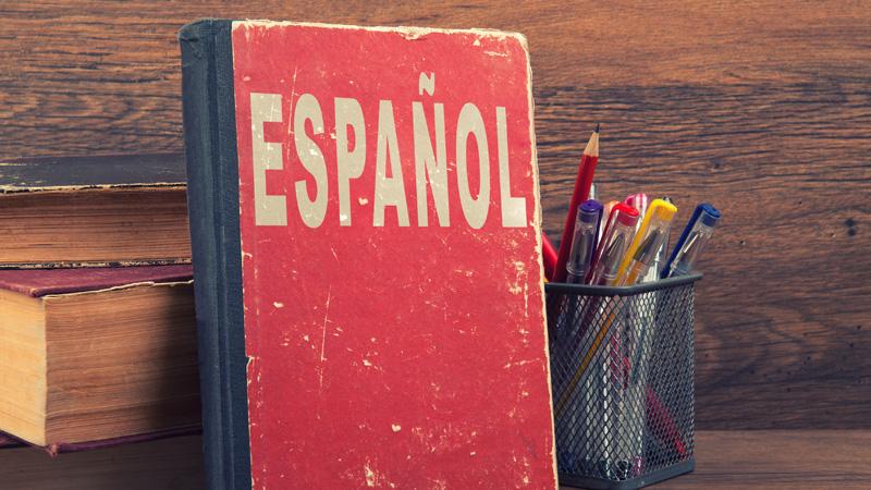 Amazon.com: spanish clep study guide