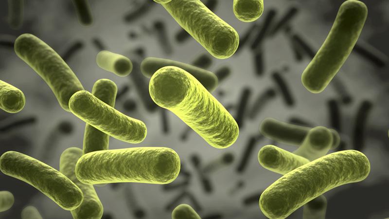Ohio Assessments For Educators Biology 007 Practice