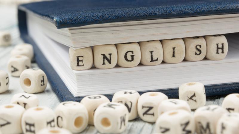 Ohio Assessments for Educators - English Language Arts (020