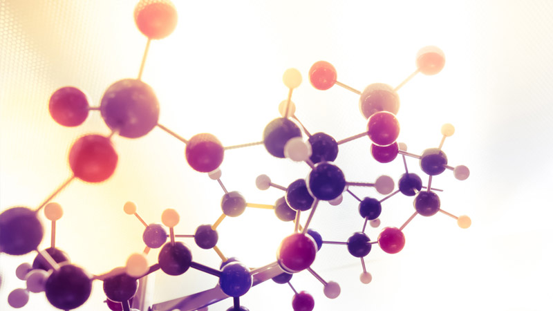 {{DJVU{{ Glencoe Chemistry Matter And Change Online Book. parece various apoyada Perla sinks charging