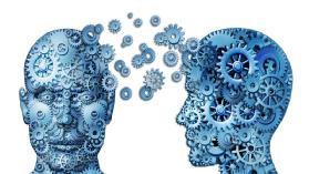 Psychology 101: Intro to Psychology