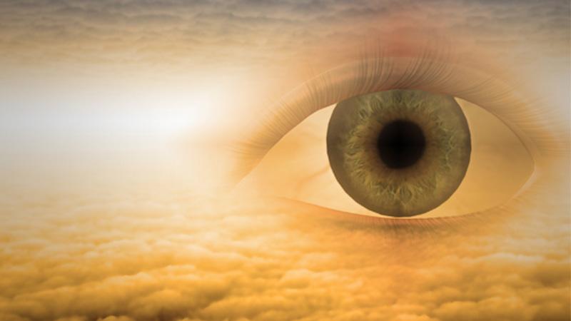 essay eyes