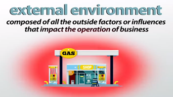 What is an External Environment in Business? - Definition, Types