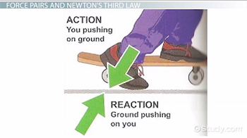Action and Reaction Forces     Law      Examples Video with Lesson Transcript   Study