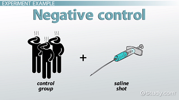 Diagram depicting a negative control group