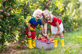 Apple picking is a great opportunity to get your students outside in the fall