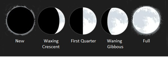 Phases Of The Moon Lesson For Kids Study Com