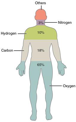 Human chemistry definition