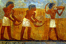 workers gathering grain