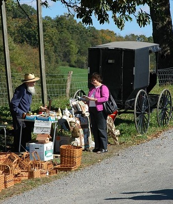 Amish Roadside Market