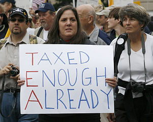 Tea Party protest sign during the Taxpayer March on Washington.
