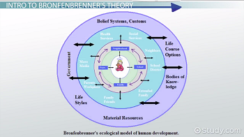 macrosystem child development
