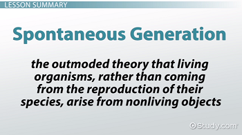 Spontaneous Generation: Definition, Theory & Examples