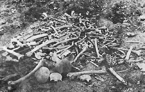 analysis of the armenian genocide in turkey during world war i and its consequences Will be a signal for other countries to consider starting an armenian genocide recognition process, said hayk demoyan which was an ally of ottoman turkey during world war i turkey warns germany: do not analysis for secure eeu.