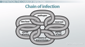 Chain of Infection: Definition & Example - Video & Lesson Transcript