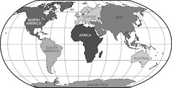 A World Map With Lines Shown