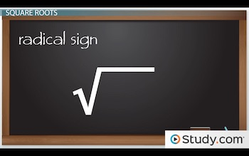 How To Find The Square Root Of A Number  Video & Lesson. Nerve Damage Signs. Maximum Signs. Mercury Signs Of Stroke. Commons Signs. Ends Signs. Aha Signs. Sensory Processing Signs. Social Skills Signs
