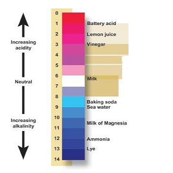 picture of the pH scale