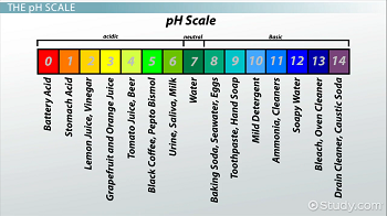 pH chart with common household products categorized