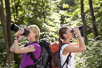 Bird watching is a fun outdoor fall activity