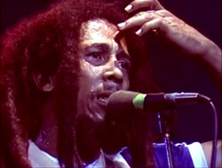 What Is Reggae? - Definition, Artists & Instruments   Study com
