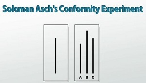 Conformity: Asch's Study - Psychology AS Flashcards | Quizlet