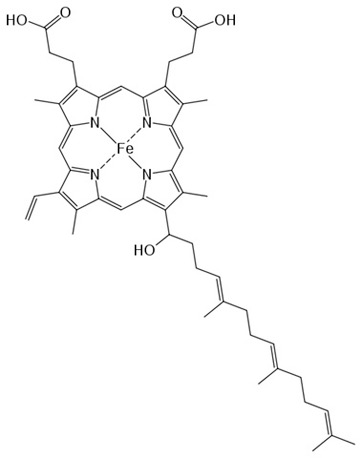 Line Drawing of the Heme Molecule