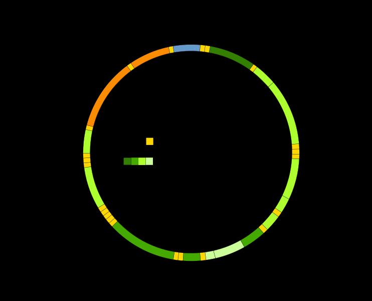 Mitochondrial_DNA_en mitochondrial matrix definition & function video & lesson