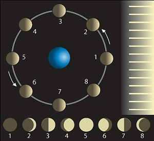 About the Moon: Phases & Facts - Video & Lesson Transcript