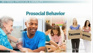 prosocial behavior becomes increasingly importance in the social context Prosocial behavior on the electronic helping context 143 social issues positive responses will increasingly exhibit prosocial.