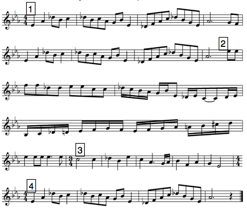 Musical Forms - Practice Test Questions & Chapter Exam | Study.com