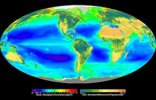 Global map of the biosphere based on primary producer location