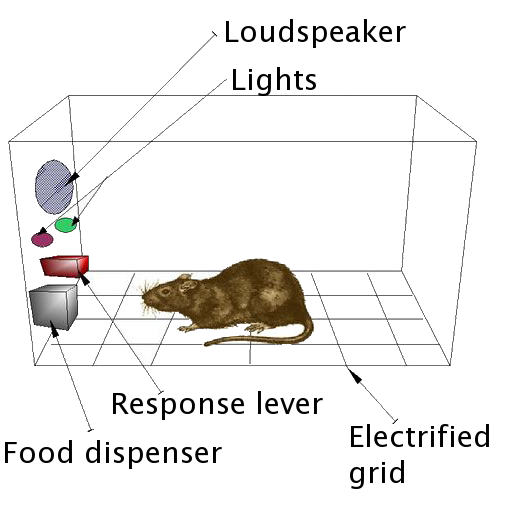 Diagram of a Skinner Box