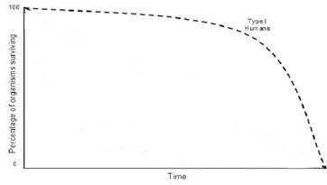 Survivorship curve types examples video lesson transcript human survivorship curve ccuart Image collections